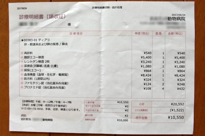 2017年6月24日明細書(猫の費用)