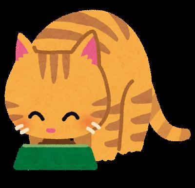 ごはんを食べる猫