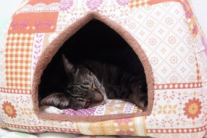 ティアラ蓄熱ベッド