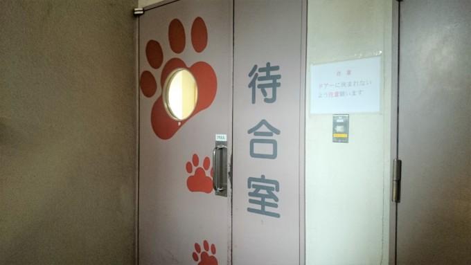 東京大学動物医療センター待合室