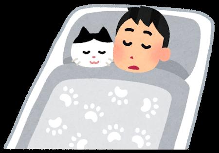 猫と一緒に眠る飼い主