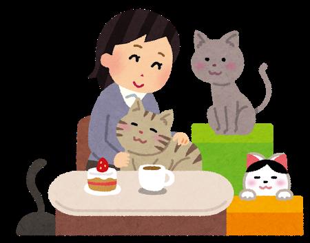 猫カフェで猫と触れ合う女性